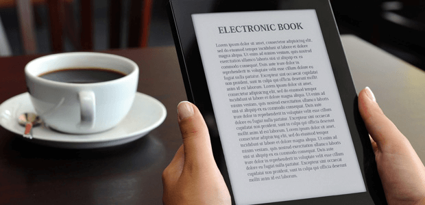 Person Holding eBook Reader